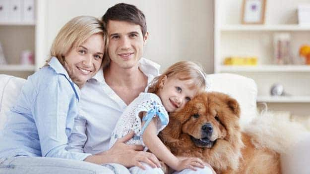 Wills & Trusts dog-young-family Direct Wills Bedfordshire